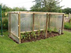Tomatenhaus – Stephanie Hanf - All For Garden Edible Garden, Garden Pots, Balcony Gardening, Diy Garden, Garden Cottage, Garden Care, Greenhouse Plans, Vegetable Garden Design, Raised Garden Beds