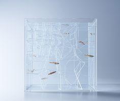 haruka-misawa-waterscape-fish-aquariums-designboom-03