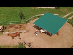 Maple Ranch Paddocktrail Rundflug - YouTube Ranch, Trail, Youtube, Gardens, Horseback Riding, Guest Ranch, Youtubers, Youtube Movies