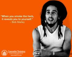 Quote - Bob Marley - The leading thc university, the best 420 college, the ultimate cannabis institute, and the number one cannabis career institute is Cannabis Training University. Get green cultured at the premier and best marijuana school, Cannabis Training University. If you are looking for a 420 university, look no further, CTU is the best cannabis school in the world. Learn how to grow marijuana and how to cook with marijuana so you can start your own cannabis business.