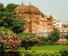 Bangladesh. 8443. 01.Botanical Garden.