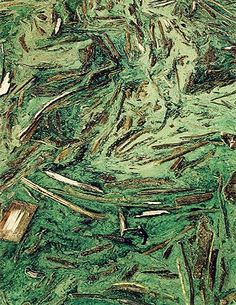 """""""Scum and Driftwood, Hite Marina, Lake Powell, Utah, September 9, 1968."""" Eliot Porter"""