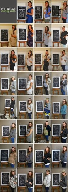 Pregnancy Overview   Chalkboard Weekly Signs