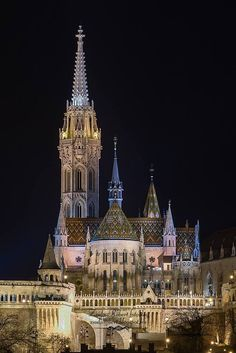 Mathias Church - Mátyás-templom - Over Looking on the Danube River - in Budapest, Hungary Beautiful Buildings, Beautiful Places, The Places Youll Go, Places To Visit, Wachau Valley, Capital Of Hungary, Cathedral Church, Chapelle, Central Europe