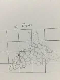 Tutorial 2B (e) Organic Objects with Proportion - Grapes