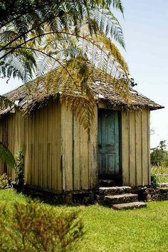 cinchona shed, Cinchona gardens, Jamaica
