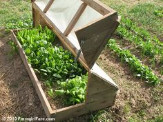 Do It Yourself Kitchen Garden Inspiration: Build an Amish Cold Frame