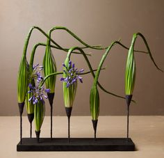 Master class for more experienced florists/amateurs with cross pollination between students. Creative Flower Arrangements, Modern Floral Arrangements, Flower Arrangement Designs, Ikebana Arrangements, Beautiful Flower Arrangements, Modern Floral Design, Corporate Flowers, Cactus, Amazing Flowers