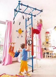 indoor jungle gym- I want this!.