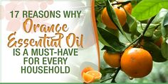 Orange essential oil can treat everything from depression to gas pain. Plus, the oil's refreshing scent will invigorate you and lift your mood. Therefore, every household should have a bottle of orange essential oil at all times.