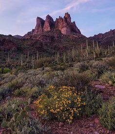 The Superstition Mountains in Mesa, Arizona.