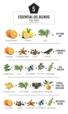 5 Essential Oil Blends To Make Your House Smell Like Fall Bring the scents of the season indoors with these 5 fall essential oil blends for your diffuser. The post 5 Essential Oil Blends To Make Your House Smell Like Fall appeared first on Hello Glow. Fall Essential Oils, Essential Oil Diffuser Blends, Essential Oil Candles, Relaxing Essential Oil Blends, Essential Oils For Christmas, Helichrysum Essential Oil Uses, Homemade Essential Oils, Essential Oil Spray, Potpourri Recipes