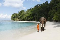 Travel agent in andaman - Andaman Dream Tour is the top travel agency in andaman that travel best travel agent in port blair. Contact for andaman tour At Honeymoon Tour Packages, Best Honeymoon Destinations, Amazing Destinations, Amazing Hotels, Holiday Destinations, Santa Lucia, Seychelles, Chennai, Kerala
