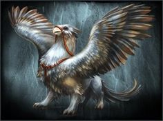 Imperial gryphon Fantasy, Gryphon, Fantasy Art, Bestiary, Mythical Creatures, Mythical, Mythology, Fantastic Beasts, Dragon Drawing