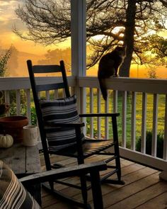 Happy Nigel and I enjoyed coffee on the porch. Foggy morning and last night's rain ushered in some cooler temps. Have a great weekend all!