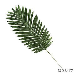 Perfect for Holy Week decorations, use these artificial palm leaves to create a traditional look in your home on Easter. Honor Palm Sunday when you gather ...
