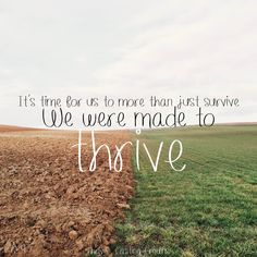 Thrive by Casting Crowns Lyrics, Christian Music lyrics and iPhone background at ChristianMusicDaily.org