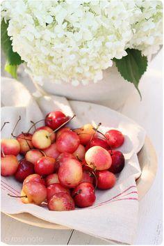 cherries & hydrangeas