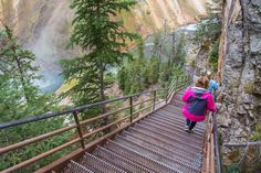 Descending the stairs of Uncle Tom's Trail; Neal Herbert; September 2015; Yellowstone National Park, Wyoming (pinned by haw-creek.com)