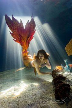 Mermaid River with Wands and Wishes Mermaids .Tail by Finfolk Productions Siren Mermaid, Mermaid Cove, Mermaid Fairy, Tattoo Mermaid, Manga Mermaid, Mermaid Bra, Mermaid Artwork, Mermaid Pictures, Mermaid Drawings