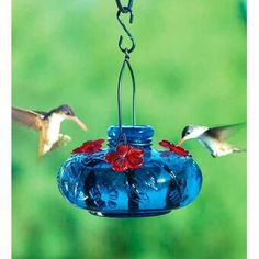 Bird Feeders attract backyard birds to your garden. Try a window-mounted bird feeder or hummingbird feeder. Or choose a metal bird feeder or wooden bird feeder.