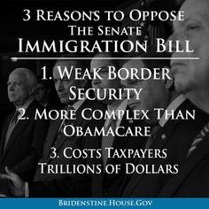 Doug Ross @ Journal: 3 Reasons to Oppose the Senate's Amnesty Bill
