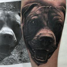 @jumillaolivares - Instagram:「Nuestro fiel amigo @radiantcolorsink @largavidatrece @jumillaolivares @tattooistartmag #radiantcolorsink #valencia #spain #dog #jumillaolivares #realistictattoo #pedro#inked #ink#2016 #blackandwhite #negro #american #realistic #tattoo #tattoospain #tattoovalencia #tatuaje #tattoos #thebesttattooartists #thebestspaintattooartists」