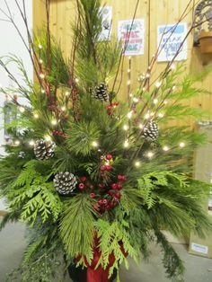 christmas decoration planters outside – Google Search | best stuff