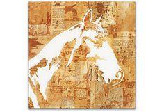Jay Kelly, Horse - Shadows