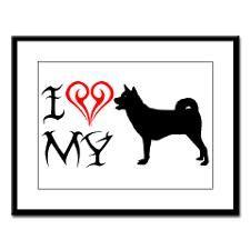 LOVE my Akita, Bella <3 <3 <3