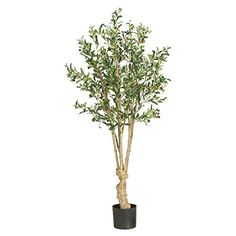 Nearly Natural 5 ft Olive Silk Tree * Check out this great product. Note: It's an affiliate link to Amazon.