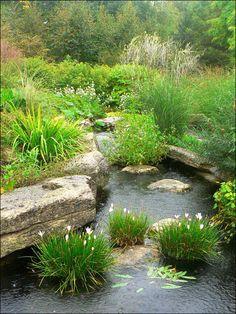 Large Boulders Outline this great landscaped pond.