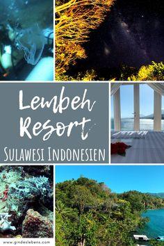 Lembeh Strait Tauchen in Sulawesi Indonesien. Einzigartiger Tauchplatz und Muck-Diving-Mekka mit einer hohen Dichte und Vielfalt ungewöhnlicher Meereslebewesen. Anglerfische, Nudibranches und die sogenannten Critters, Kleinstlebewesen, die man teilweise nur hier findet. Hoteltipp: Lembeh Resort, perfekt um die berühmte Lembeh Strait (Lembeh Straße) mit ihrer Unterwasserwelt zu erkunden. www.gindeslebens.com #Sulawesi #Indonesien #TauchenSulawesi #LembehResort #LembehStrait #CrittersLembeh Jimbaran Bali, Tromso, Koh Tao, Places To See, Asia, Pictures, Travel, Wanderlust, Vietnam Travel