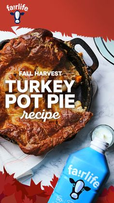 Fridge still full of last night's turkey dinner? Grab a bottle of creamy fairlife ultra-filtered milk and give your leftovers a second wind with our Fall Harvest Turkey Pot Pie Recipe. Pie Recipes, Cooking Recipes, Halibut Recipes, Turkey Burger Recipes, Fried Chicken Recipes, Cauliflower Recipes, Scallop Recipes, Pork Tenderloin Recipes, Crock Pot
