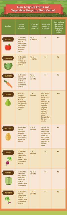 How Long do Fruits and Vegetables Need to be Kept In a Root Cellar