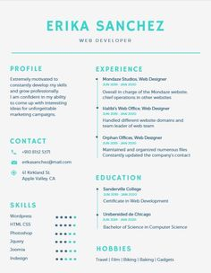 Us Resume Template Vector Template For You Resumefet On Creativemarket  Font