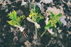 Buttonholes Foliage Greenery Ethereal Coral Countryside Wedding Ideas http://www.robtarren.co.uk/