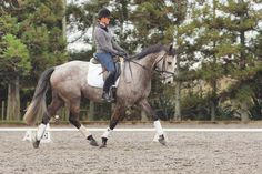 Small changes, BIG results: 12 top dressage tips