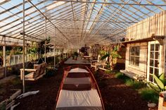 For rent: private green house beach farm in California.