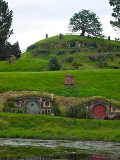 Lord of The Rings set in Buckland, Walkato, New Zealand. Photos by Daniel Pietzsch.