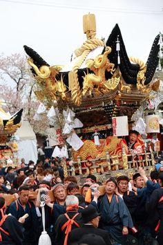 だんじり祭 Danjiri Matsuri Festival, Japan