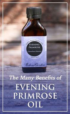 The Benefits Of Evening Primrose Oil   Edens Garden