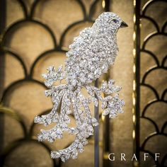 Take flight with Graff Diamonds precious bird brooch, an exquisite design featuring 40.24 carats of the finest diamonds. #GraffDiamonds #FineJewellery
