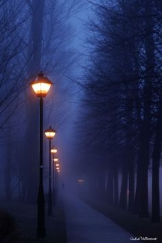 I love a foggy night.