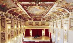concert at Esterhazy Palace's Haydnsaal in Vienna! Concert Hall, Barcelona Cathedral, Palace, Opera, Europe, Building, Vienna, Shadows, Masks