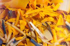 Aksamitka, strażniczka zdrowia – Zioła w Pełni Carrots, Vegetables, Food, Android, Magick, Searching, Essen, Carrot, Vegetable Recipes