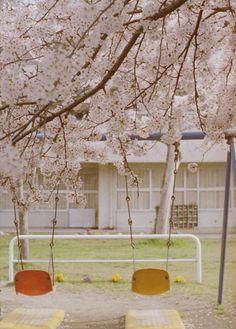 swings in the schoolyard.