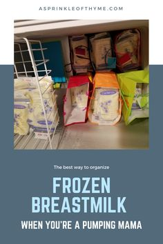Deep Freezer Breastmilk Storage Solution for the Pumping Mama Storing Breastmilk In Freezer, Freezing Breastmilk, Breastmilk Storage, Breastfeeding Storage, Breastfeeding And Pumping, Deep Freezer Organization, Storage Organization, Chest Freezer, Toddler Recipes