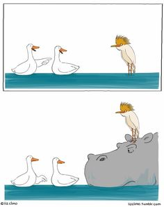 https://www.facebook.com/LizClimo/photos/a.357503164314645.84275.264970223567940/1180331465365140/?type=3