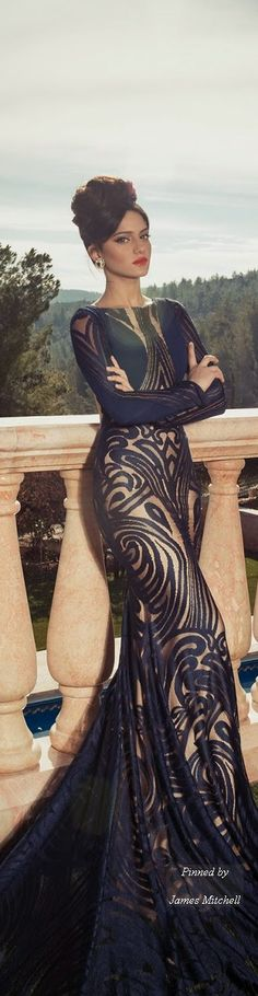 Evening Dresses 2014 Collection By Oved Cohen jaglady